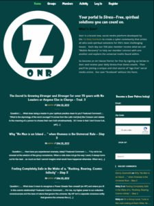 tablet view of Zonr website